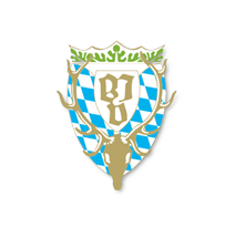 icon-bjv-service