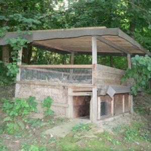 Fanggarten mit eingebauter Weißer Kastenfalle - Foto: BJV